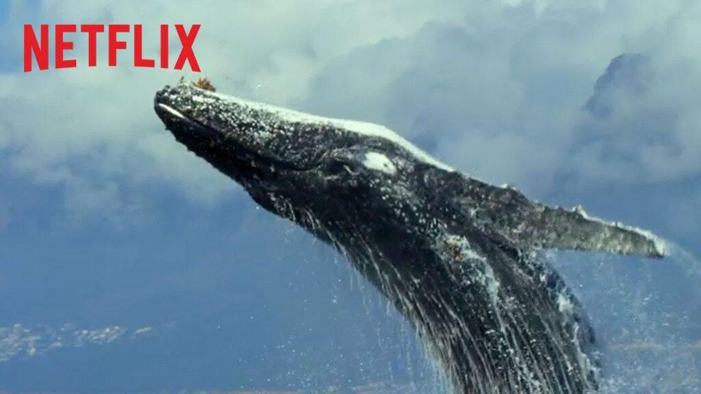 Netflix Bedava Dizisi: Gezegenimiz